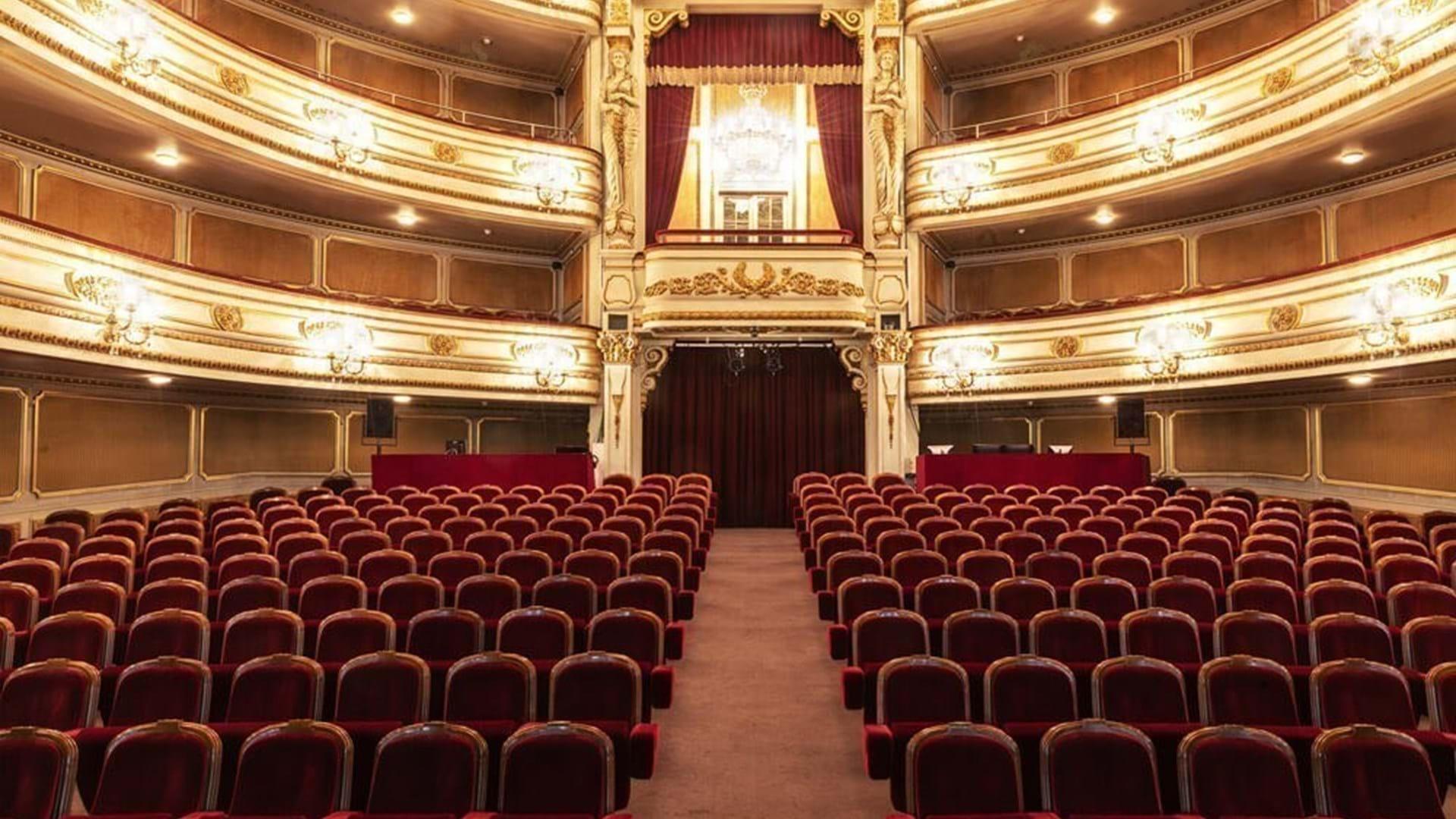 Teatro Nacional D. Maria II - Parcerias | Grupo Ageas Portugal